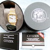 2014-citizen gold plated mens eco-drive solar powered watch.