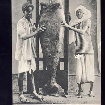 Mermaid of Aden (1911)
