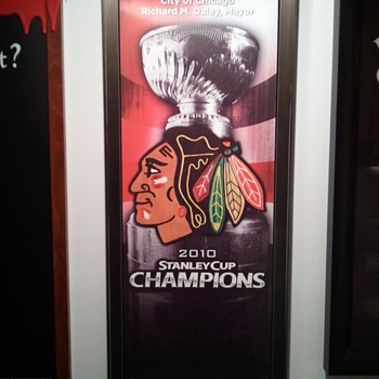 Chicago Blackhawks Stanley Cup Champs banner - Offical City of Chicago