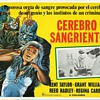 Mexican Lobby Cards