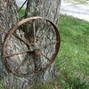 Antique Tractor Wheels...In a tree