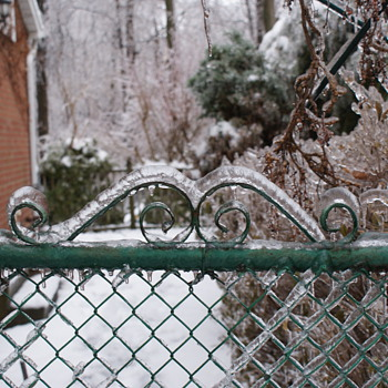Frozen Vintage Garden Gate – Still Standing After a Horrible Storm