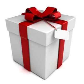 Christmas presents 2013