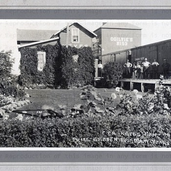 Prize winning Railway Gardens 1925 - Photographs