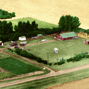 Morris Family Farm 1967 - Photographs