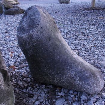 odd looking rock or fossilized foot and part of a leg of an animal