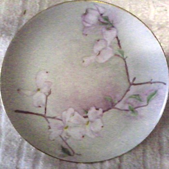 "L. Hutschenruether Selb 8"" Porcelain Plate / Hand Painted and Signed Floral Design/Bavaria, Germany/ Circa 1955"