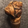 Ivory bulldog with sterling muzzle