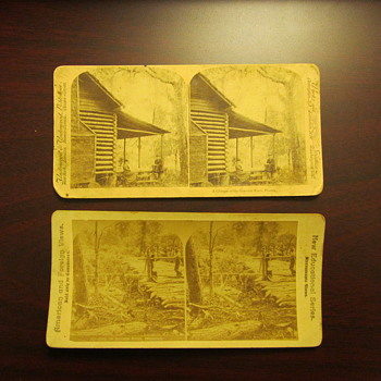 Stereo View Prints