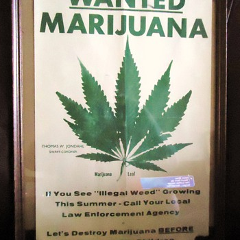WANTED  POSTER 1980  MARIJUANA  Probably only poster left in existance - Posters and Prints