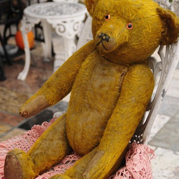 Do You know this Bear? - Dolls