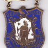 Boston GAR reunion enameled delegate badge  c. 1890