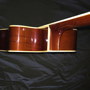 Pignose Acoustic Cutaway - Guitars