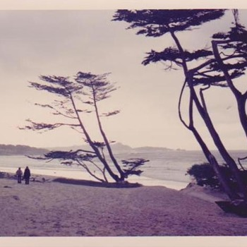 CARMEL BEACH IN AUTUMN, 1973