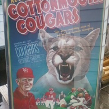 Houston University Cottonmouth Cougars Poster 1976  - Posters and Prints