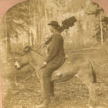 Stereoview of a Photographer with Stereo Camera on a Donkey. 1890s