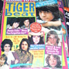 1970s&#039; TIGER BEAT MAGAZINES TONY DE FRANCO DONNY OSMOND LEIF GARRETT 