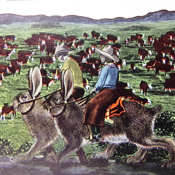 Riding Jackrabbits  - Postcards