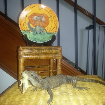 AUSTRALIA DAY: FRILL NECK LIZARD PLATE & WATER DRAGON