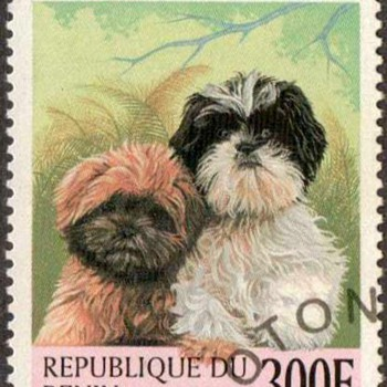 "1998 - Benin ""Shih-Tzu"" Postage Stamp - Stamps"