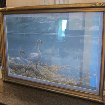 Robert Bateman  -  Wide Horizons Tundra Swans - Posters and Prints