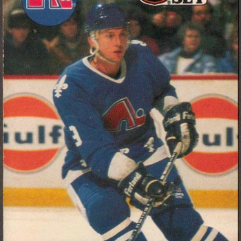 1990 - Hockey Cards (Quebec Nordiques) - Hockey