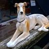 Vintage Greyhound/Whippet Ceramic Figurine Flea Market Find $2.00