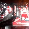 Detroit Red Wings Collectables