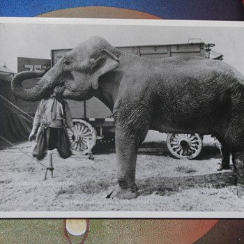 Circus side show postcard