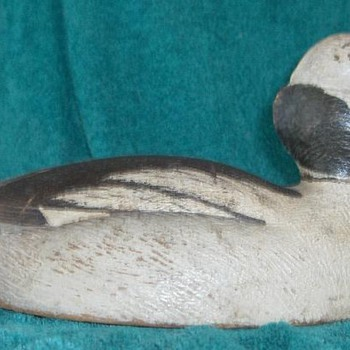 Peter M Pringle bufflehead drake