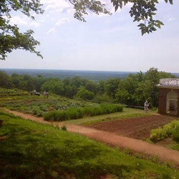 View from Thomas Jefferson's Monticello