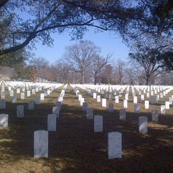 Arlington National Cemetary  - Photographs