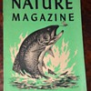 Nature Magazine - many old issues