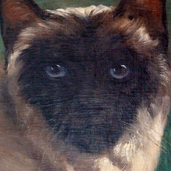 Vintage Oil of A Siamese Cat By W. Perrett