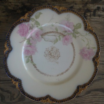 My Haviland Plate