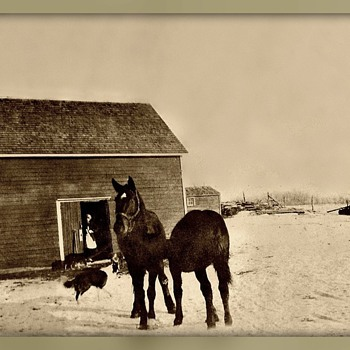First house in Conquest Canada of my Great Aunt  - Photographs
