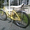 Schwinn Fair Lady 20 inch girls bike.