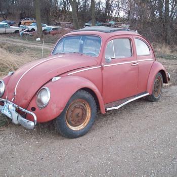 My 1960 Volkswagen Beetle - Classic Cars