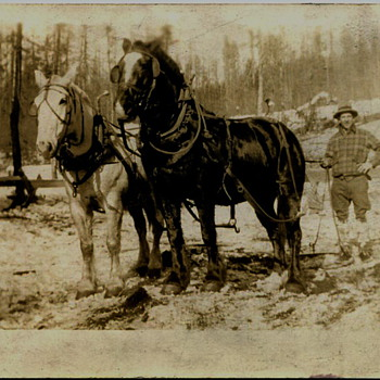 Eastern Washington Logging Scenes..1920s