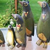 My Flock of Penquins and their adopted child :-)