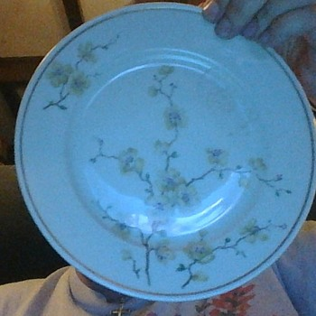 Johann Haviland plate with white cherry blossoms