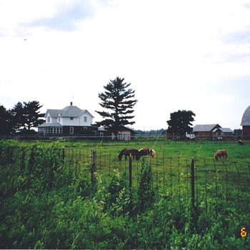 This was my farm and I miss it . - Photographs