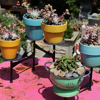 Vintage California Flowerpots - in use!