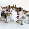 ShakeThatThang Vintage Salt & Pepper Shaker Gold Glazed Longhorn Bulls , 1950's Ucagco Japan,