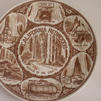 California Redwoods Avenue Of The Giants Plate