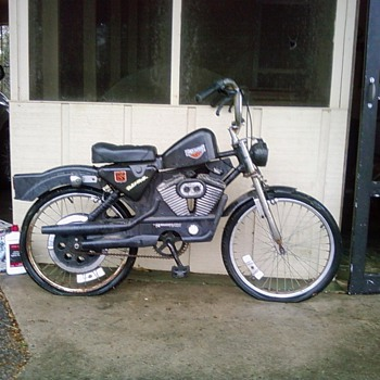 "Harley Davidson 20"" bike"