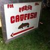 Fresh Catfish For Sale