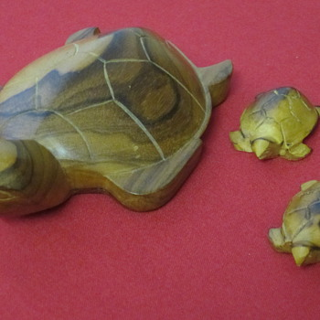 Family of Turtle's - Animals