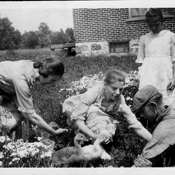 1915 about . My Grandma feeding the ducks with sisters and Brothers 