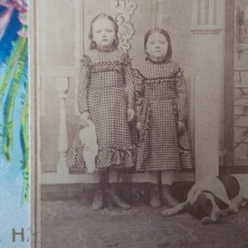 Civil War Era CDV, SISTERS IDA & FLORENCE AND THE HOUND DOG ON THE FLOOR - Photographs
